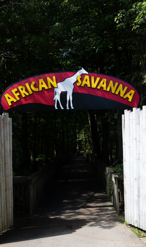 Cape May County Zoo, New Jersey, African Savanna,