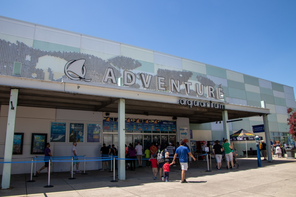 Adventure Aquarium, NJ, Philadelphia, Camden, Marine Life, Sea Life