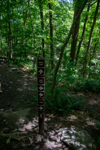 ringing rocks, loop trail, hiking, forest, woods, trees