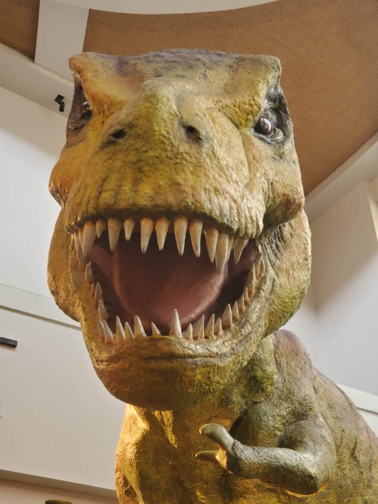 T-Rex, Islands of Adventure, IOA, Universal, Florida, Orlando,