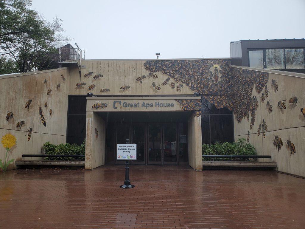 Great Ape House National Zoo, National Zoo, Free, Smithsonian, Washington DC, Capital, Animals, Monkeys,