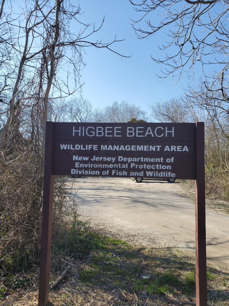 Higbee Beach, Cape May, NJ, New Jersey, Shore, Vacation, Beach,