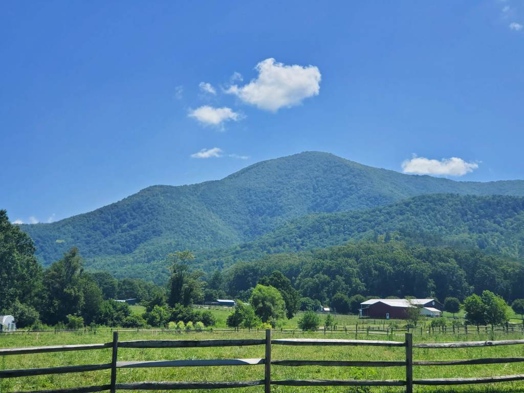 view from road of the Great Smoky Mountains