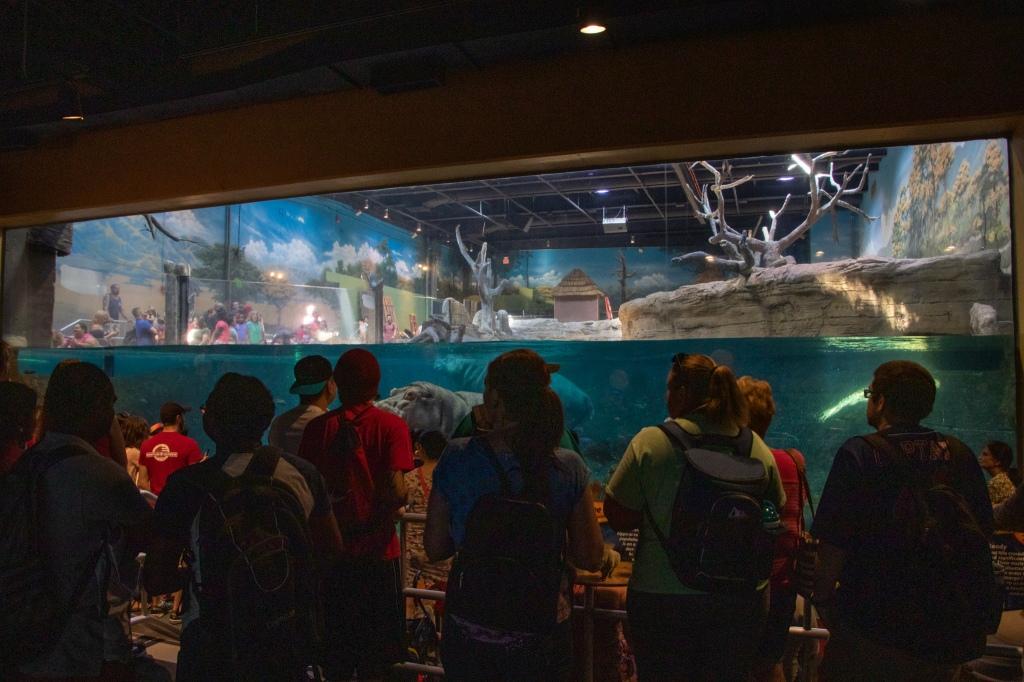 Adventure Aquarium,
