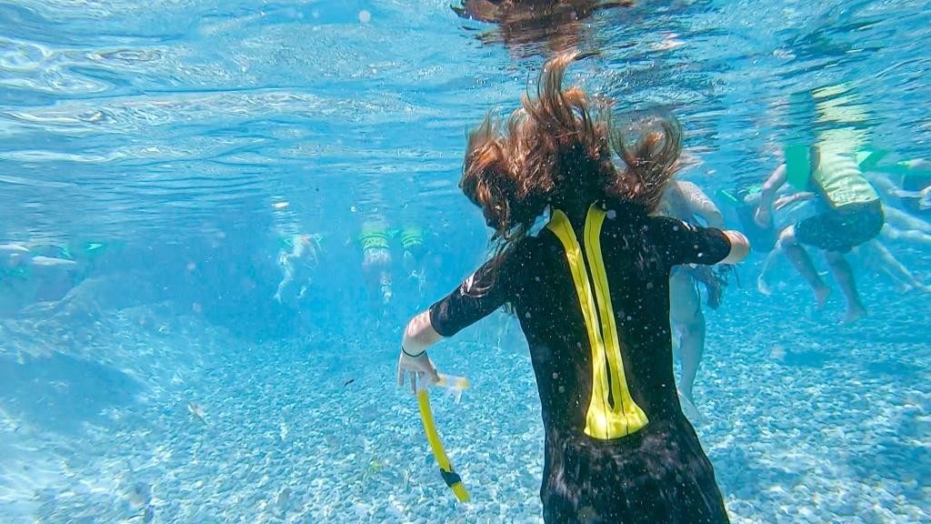 Discovery Cove, Florida, Orlando, swimming, underwater,